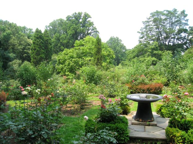 Červencová zahrada nejen ve znamení sklizně, ale také hnojení, zálivky a boje proti mšicím